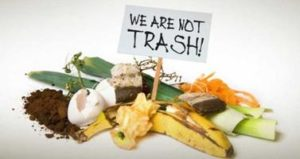 Food Waste & Composting